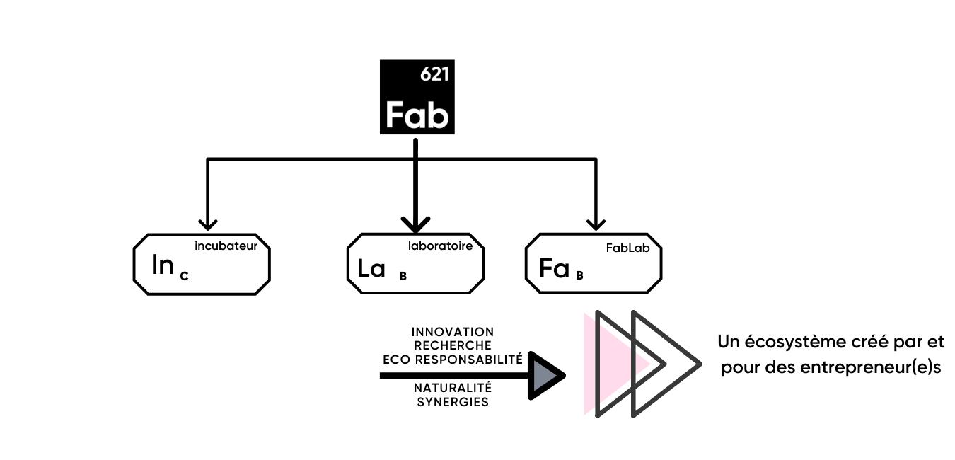 Ecosystème schéma
